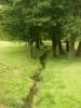 Ctěnický potok protékající zámeckým parkem pramení nedaleko