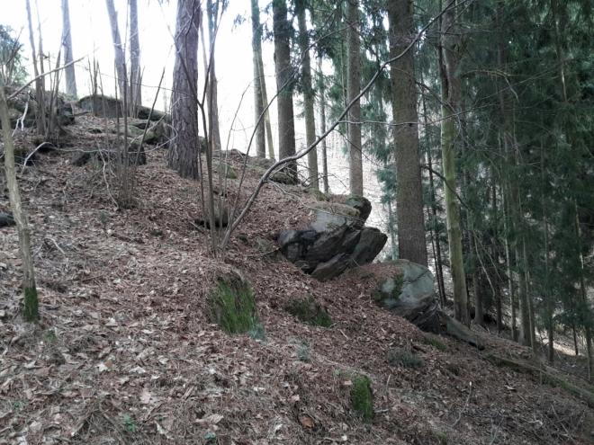 Svah mezi vrcholy Zámku a Hřebene.