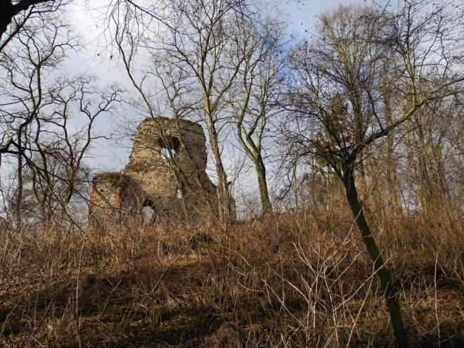 Zřícenina hradu Střela.