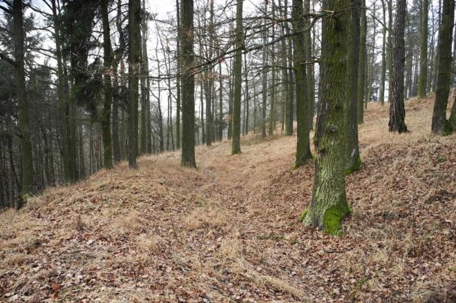 Valy slovanského hradiště Hradec jsou dobře patrné a vedou ve dvou řadách kolem celého vrcholu.