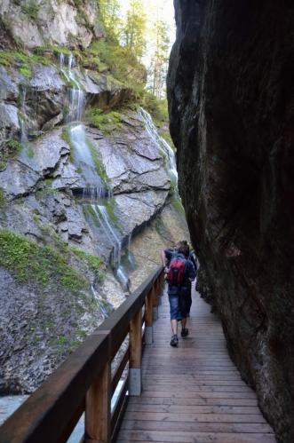 Soutěska má na délku kolem 200 metrů a vymletá je převážně v tzv. dachsteinském vápenci. Vzduch je zde příjemně nasycen vlhkostí a po skalách na východní straně stékají desítky drobných vodopádů.