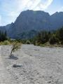 V údolí Wimbachtal, Berchtesgadenské Alpy, Německo