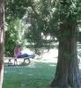 Čtení v parku