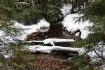 Teplá Vltava pod Černou horou nese správně název Černÿ potok. Jako pramen Vltavy je ale místo známé již hezkou řádku let.