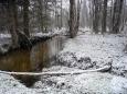 Zlatý potok pod Ovesnou.