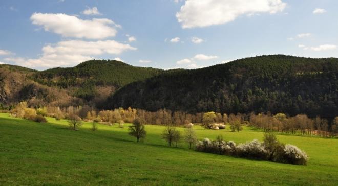 Důvodem přeložky turistické trasy zřejmě budou pastviny a soukromé pozemky.