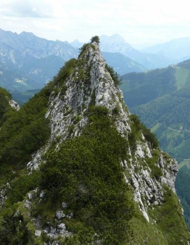 Ostrý hřeben Bosrucku (pohled zpět, na východ)