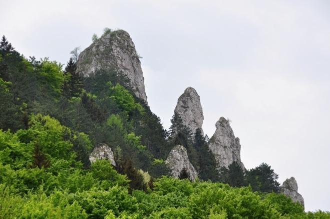 Dolní část Vršateckých bradel.