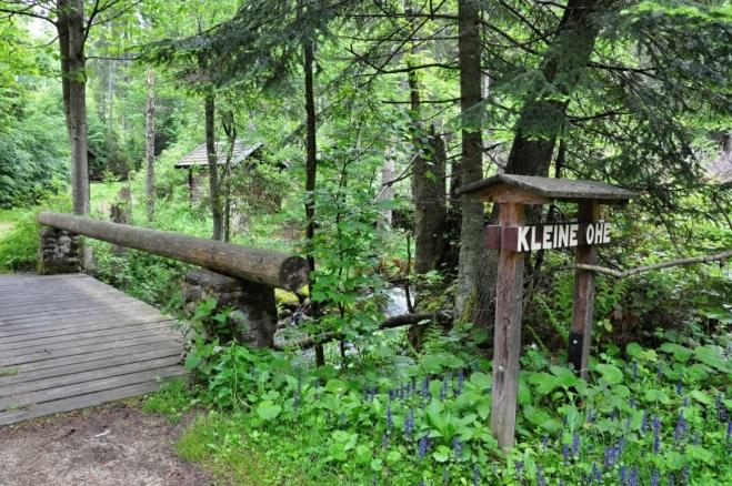 U potoka Kleine Ohe začínáme. Naučnou stezku, která má vzhůru stoupat podle vody, ale nenacházíme.