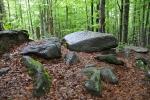 Z vrcholu Luzného se kameny zatoulaly leckam.