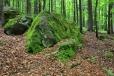 Kratší výstup na Waldhäuserriegel zdobí mnoho mohutných balvanů. Stejně tak i další cestu přes kopec.