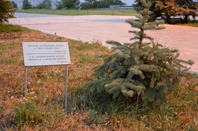 Fotka pořízená ve skutečnosti až v závěru naší návštěvy. K nalezení je tu například i strom od Karla Schwarzenberga či Jana Fischera. Pobíháním mezi stromy a prohlížením cedulí jsme strávili docela hodně času.