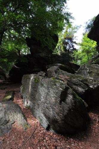 Jsme u Zkamenělého zámku, který je tvořený hrubozrnými dvojslídovými ortorulami a vznikl vypraparováním z okolních méně odolných hornin ve starších čtvrtohorách. Výška skal dosahuje 10 m a skály jsou podkovovitě uspořádány.