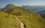 Krásnou hřebenovou stezkou pokračujeme sami s Romanem. Všichni ostatní se překvapivě vrací stejnou cestou z vrcholu.