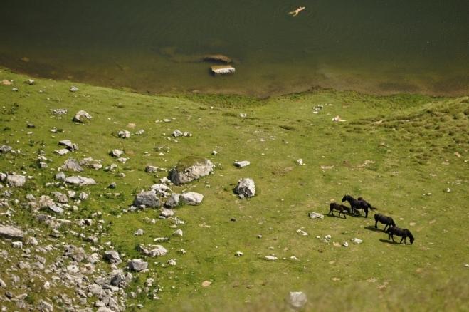 Koupel? Při focení zoomem jsem vůbec nevěděl, že dole někdo nahatý plave.