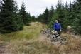 Na Sklářský vrch nás vede nízká kamenná zídka.