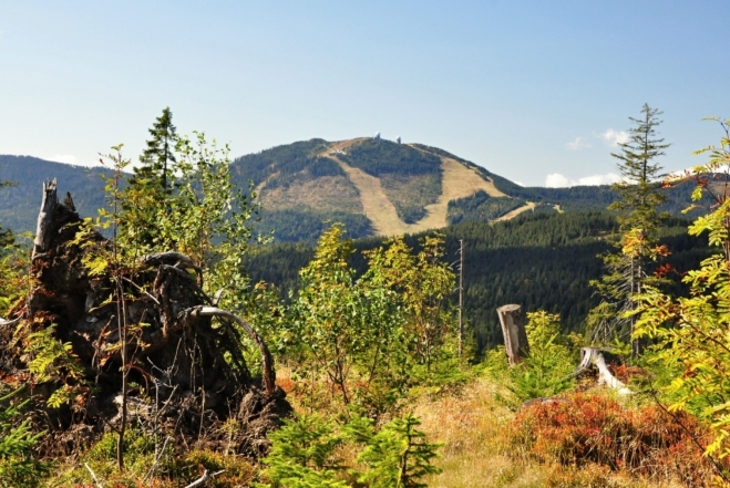 Velký Javor (1 456 m n. m.) budeme mít na očích až na Ostrý.