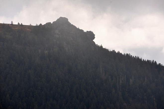 Velký Javor - Richard Wagner kopf. Jà vidím ale rysa připraveného ke skoku na svoji kořist.