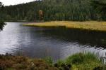 Malé Javorské jezero (Kleiner Arbersee) je velmi fotogenické. Po dvou letech se k němu vracím téměř ve stejném období.