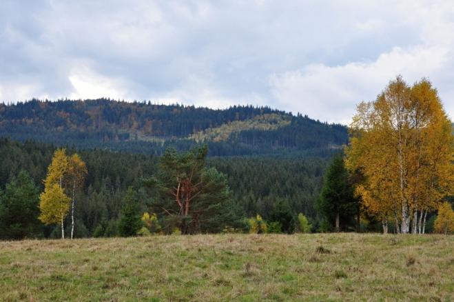 Hůrecký vrch (1 099 m n. m.) od Slučího tahu.