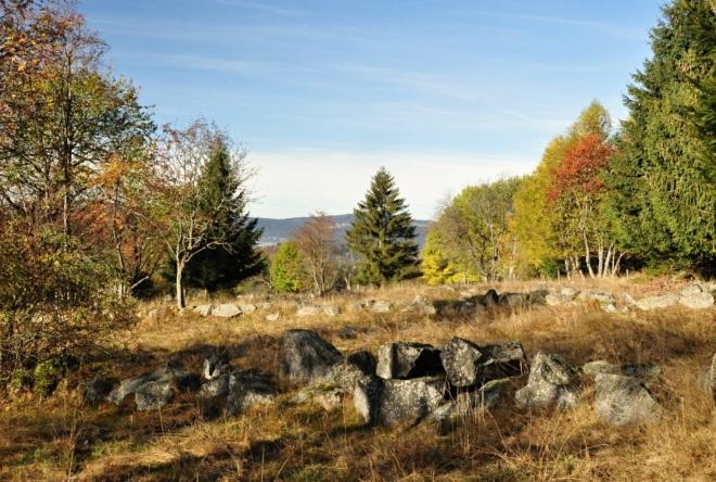 Pastviny u bývalé obce Radvanovice dnes zarůstají. Co zůstává jsou kamenné valy směřující od cesty k vrcholu Radvanovického hřbetu.