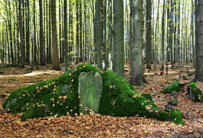 Na Radvanovickém hřbetu občas narazíte na nějakou zvláštnost...