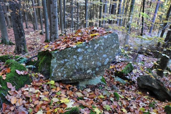 U jednoho z vrcholů Radvanovického hřbetu..