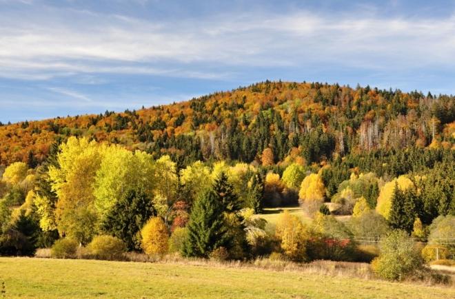 Radvanovický hřbet koncem října předvádí svoji dokonalou krásu!