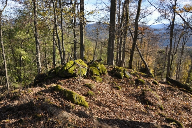 Vrcholová pasáž. Pro snazší terén slézáme podle skal k jihu. Tudy bych doporučoval i výstup, který bude bez nebezpečí pádu mezi polomy uschlých smrků.