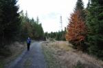 Na Žlíbském vrchu.