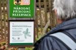 U NPR Žofínský prales.