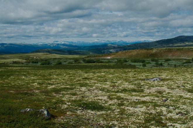 Jihozápadní obzor ohraničují zasněžené štíty nejvyššího norského pohoří, Jotunheimenu.