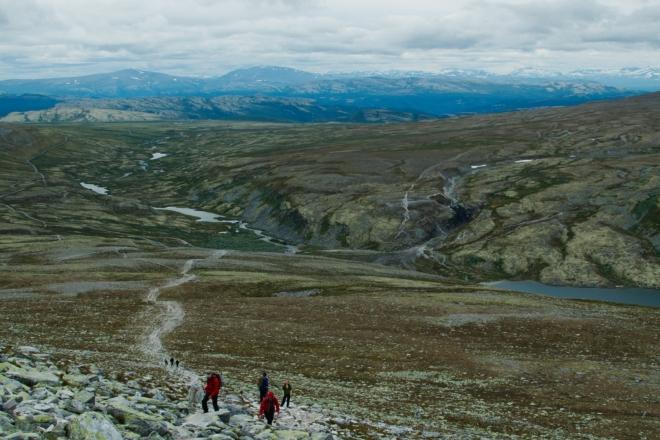 Prostředí se v Norsku s nadmořskou výškou mění velice rychle.