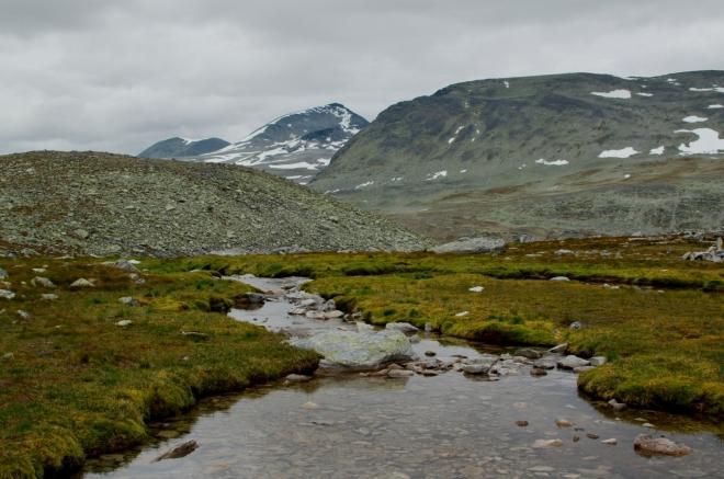 Všimněte si té čisté vody a krásně zelené trávy okolo. Ta byla v takové výšce opravdu ojedinělá.