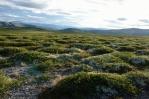 Národní park Rondane při parkovišti Spranghaugen, Norsko