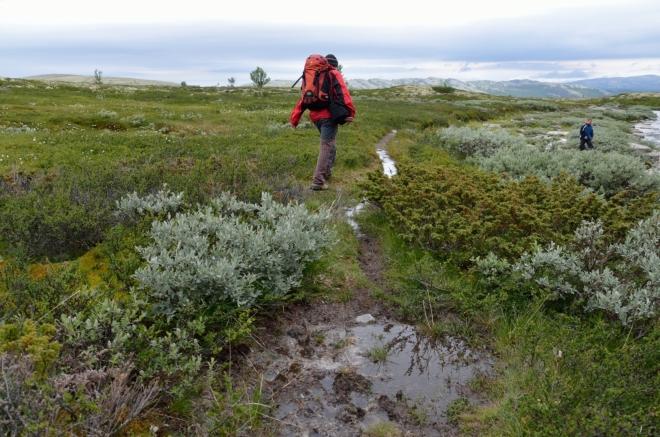 Dnes se velice hodí mít nepromokavé boty. Nejen že je zdejší zem často silně podmáčená, ale občas i drobně poprchává. Silný déšť se nám naštěstí zatím vyhýbá.