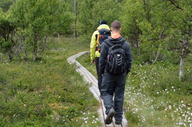 Podmáčeným terénem míříme k vyhlídce na vodopád Veslulfossen.