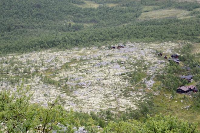Lišejníkový ostrov