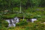 Národní park Rondane, Norsko