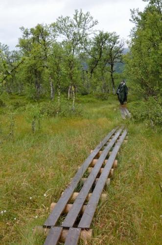 Cesta vede opět krásnou, ale podmáčenou přírodou. Důležité také je, že jdeme po rovině, že by přece jen existovala jiná trasa než nahoru a dolů?