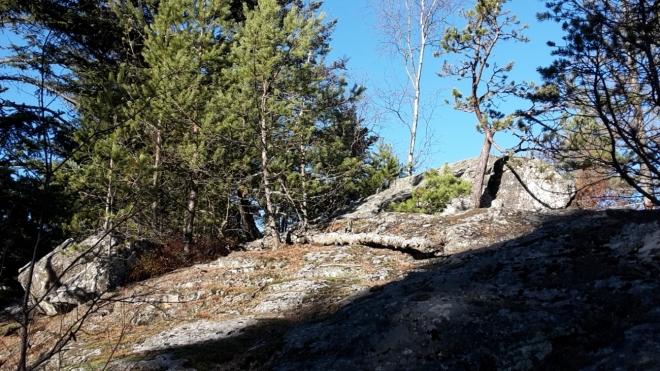 Rohanovský vrch V (1 000 m n. m.).