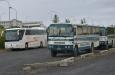 Terénní autobusy s vysokou nápravou a zkosenou zádí na překonávání brodů.