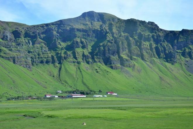 Pohled z autobusu na útesy zvedající se z pastvin zhruba na úrovni moře, které k nim dříve zřejmě dosahovalo.