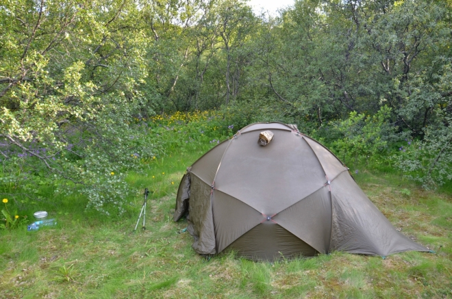 Náš starý, ale skvělý stan Gemma na mýtince v islandském lese.