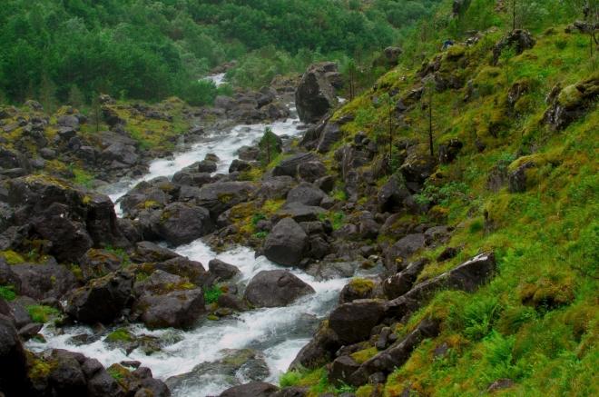 Blízké okolí je neustále zavlažováno vlhkostí od dopadající masy vody. Tráva je zde krásně zelená, což ostře kontrastuje s černými kameny.