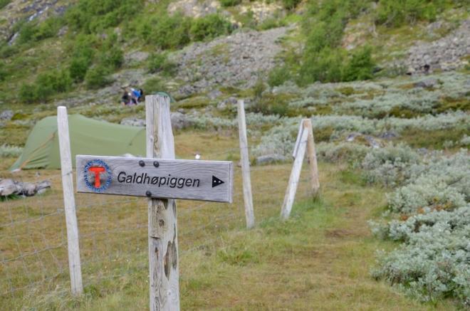 Vzhůru do národního parku Jotunheimen, další zastávka za 1300 výškových metrů na vrcholu Galdhøpiggenu. Když nebude zbytí, tak i dříve.