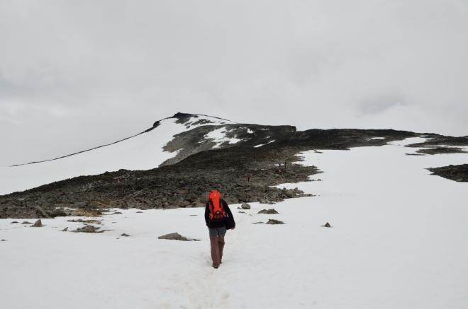 Přibližně po hodince a půl stoupání začínáme mít na dohled první vrcholovou prémii – Svellnose s výškou 2272 metrů. Ještě nějaká ta půlhodinka a jsme tam.