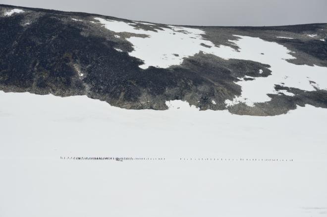 V dálce vidíme skupinu turistů, která překonává ledovec s horským vůdcem. Tato stádní turistika nás dneska naštěstí nečeká, aspoň do chvíle, než se s těmito davy setkáme nahoře.