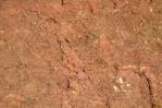 Oranžové jílové bláto