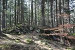 Kóta 1 002 m je jižním vrcholem Velkého Plešného (dle www.tisicovky.cz). Na vrcholu je malá skalka.